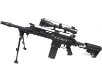 Milsig M17 DMR Sniper Paintball Gun